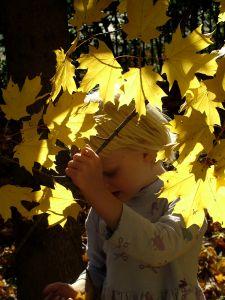 criancas-outono-moda-anderson-atacado
